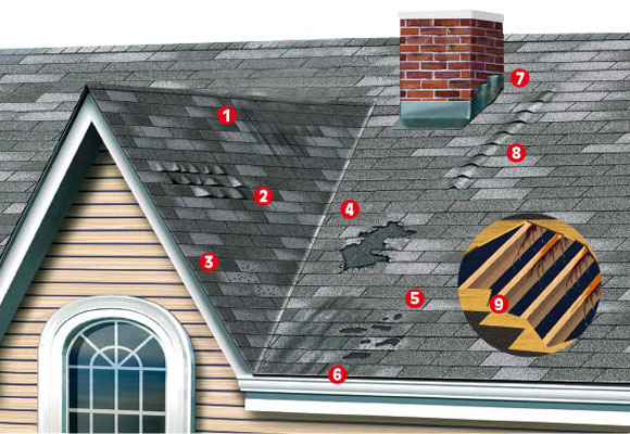Warning Signs of A Potential Roof Problem 5